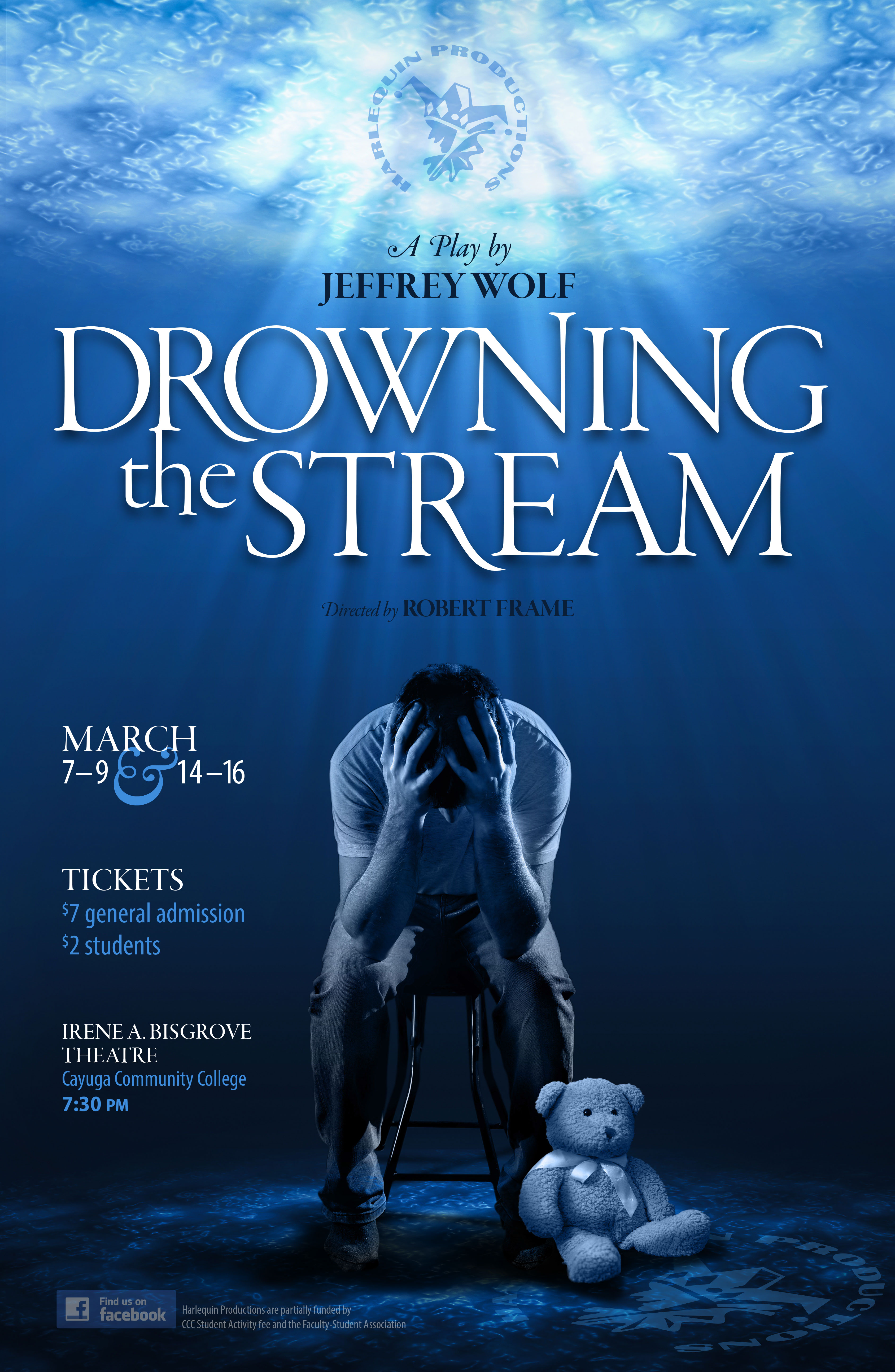 Drowning the Stream poster